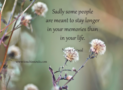 some people are meant to live Some people quotes from brainyquote, an extensive collection of quotations by famous authors, celebrities, and newsmakers.